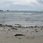 8 zee zuiden (Koh Samui)